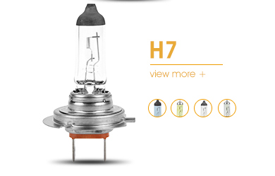 Factory h16 12v 19w car lamp head light headlight halogen bulb
