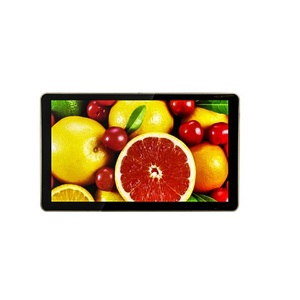 LCD monitor with VGA/HD/DVI/CVBS(AV)