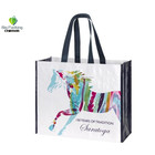 Printing Grocery Tote Shopping Pp Various Colors Promotion Laminated Non Woven Bag