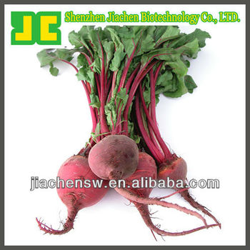 Sell 100% natural Beet root P.E. with Betanin,high quality Beet root extract powder