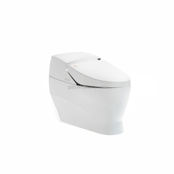 high quality manufacturer Bathroom one piece intelligent toilet