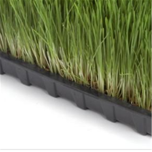 Perfect heavy duty 1020 Trays Extra Strength, Low MOQ, Seed Starting Plant Propagation Germination Tray No Holes Fodder System
