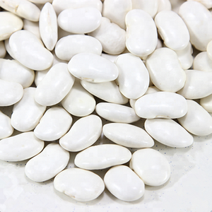 Kidney White Bean for Canned Food