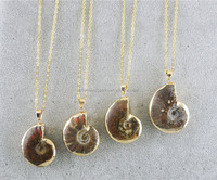 CH-ZAP0695 fashion necklace,wholesale sea snail pendant necklace,special shell necklace