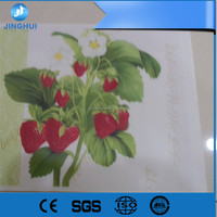 Protective film for pp hollow sheet manufacturer