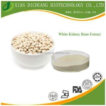 health medical supplement Top Quality White Kidney Bean Extract powder