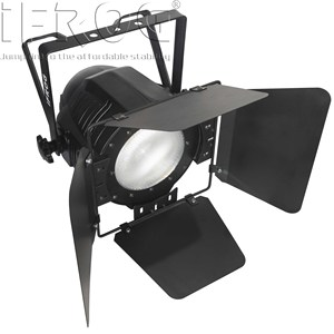 Cheap Price White Light COB LED Face Light Fresnel Par Light