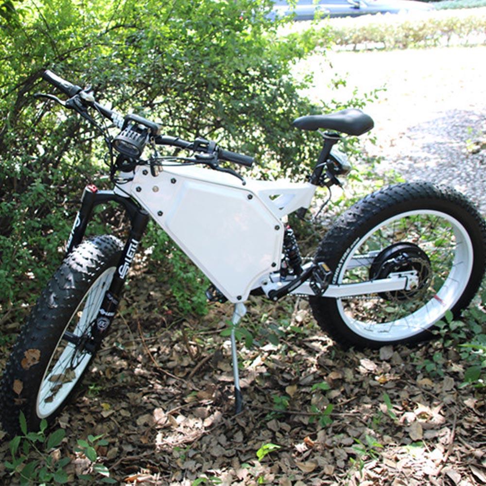 fat mountain 48v 1000w e bike/ebike/electric bicycle for sale, White black