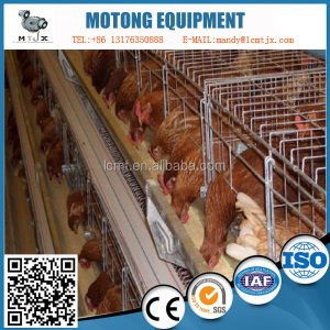 Design standard broiler poultry farms tent/broiler chicken cages