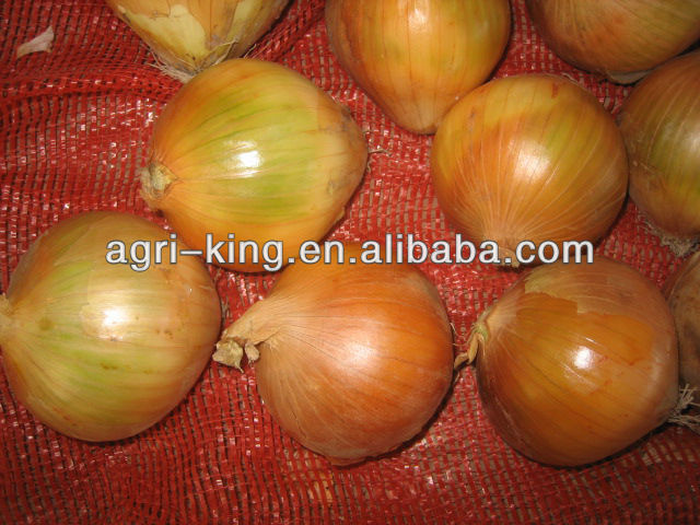 market price for fresh red onion