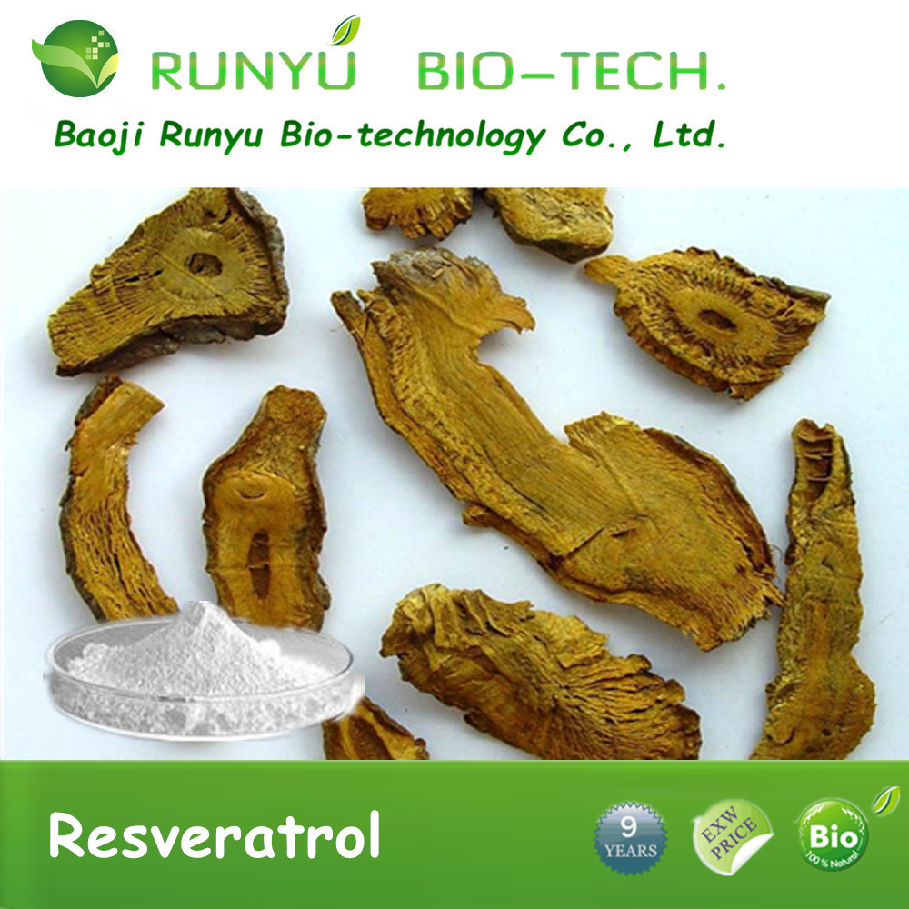 Hu Zhang Health Polygonum Cuspidatum Extract and Natural Resveratrol Powder