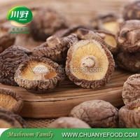 2018 On Sale Whole Dried Shiitake Mushroom 1kg