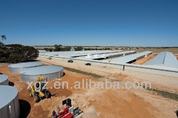 Commercial Chicken House automatic chicken house poultry farm design for algeria - buy