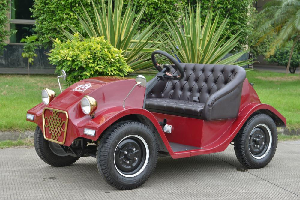 Competitive Price Mini 2 Seater Electric Garden Car - Buy Two Seater ...