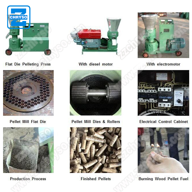 China Strongwin homemade used small wood pellet making machine for biomass fuel