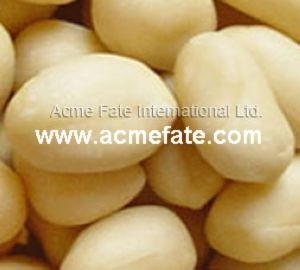 New Crop Roasted Blanched Peanuts Kernels China