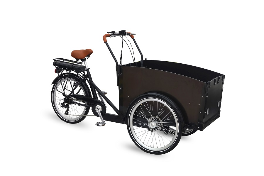 Two front wheels family cargo bike kids for sale