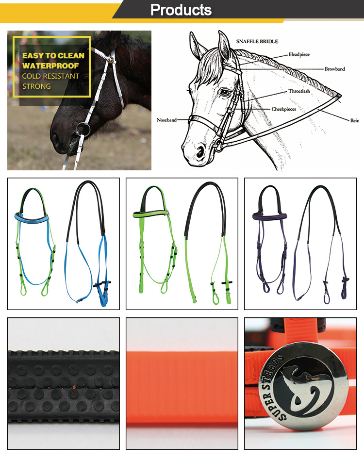Paardensport charm horse racing hoofdstel
