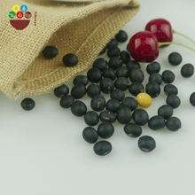 Chinese manufacturer black soybean buyers at competitive price