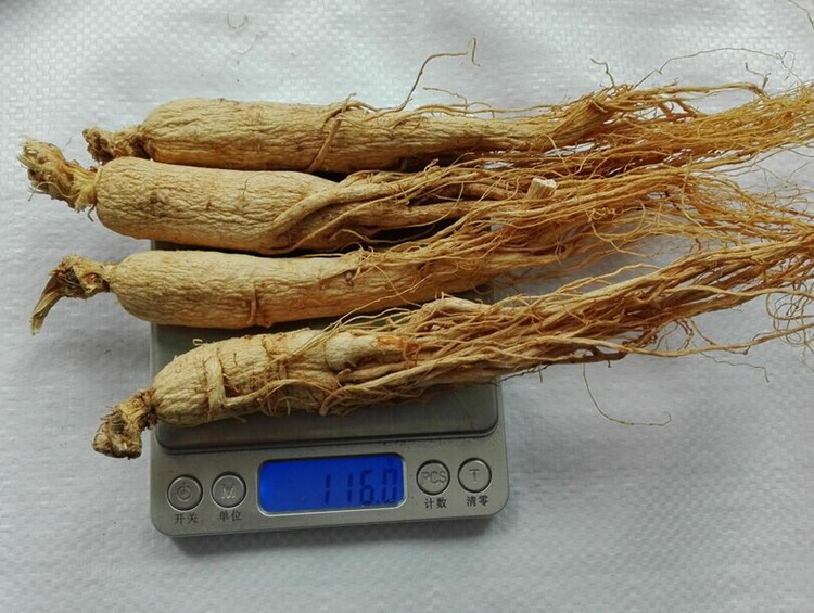 sheng shai shen China supplier wholesale suncured ginseng root slices