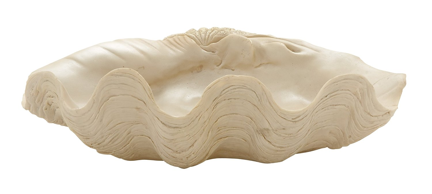 Plutus Brands Contemporary Styled Shell Bowl