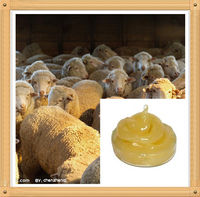 Pure Natural and High Quality Sheep Wool Grease
