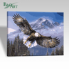 Flying Eagles Modern Oil Paintings Paint by Numbers for Wholesale