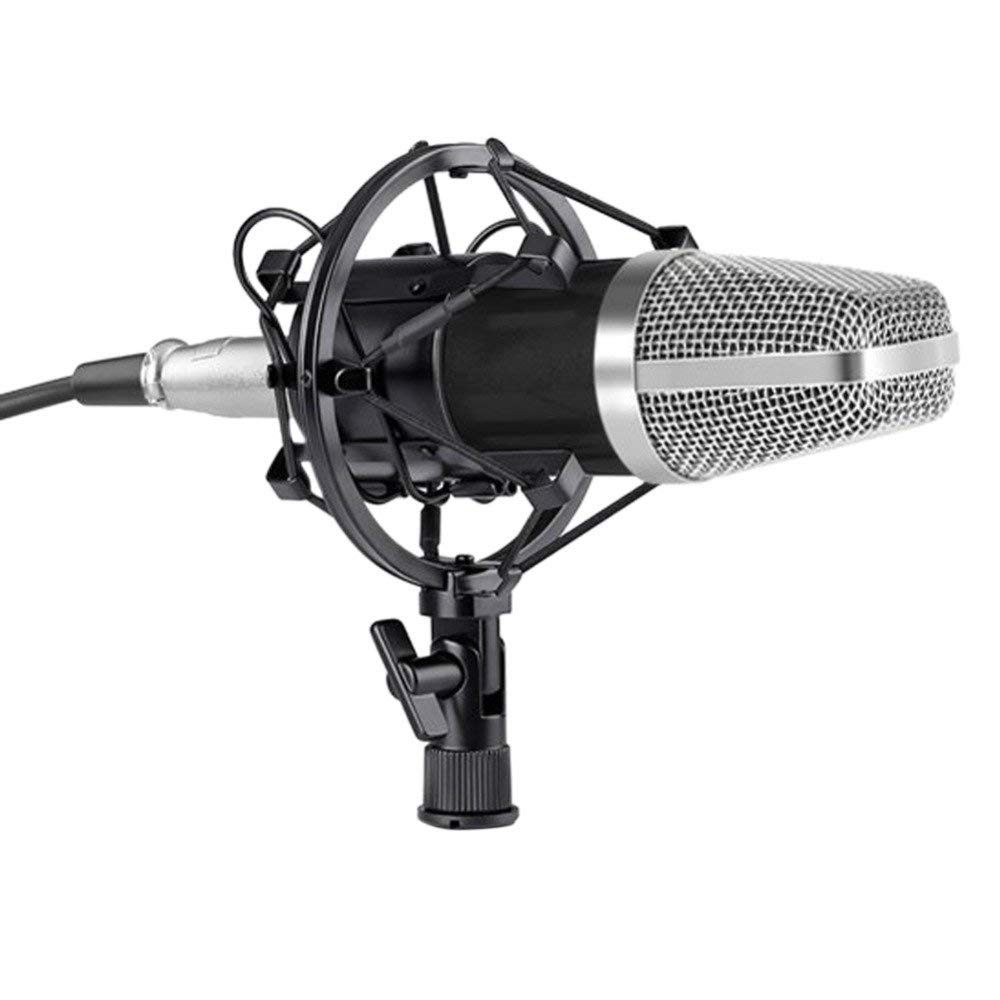 Cheap Microphone Studio Recording Find Stand Mic Holder For Get Quotations Ertianang Bm 700 Professional Sound Broadcasting Condenser Wired Ktv