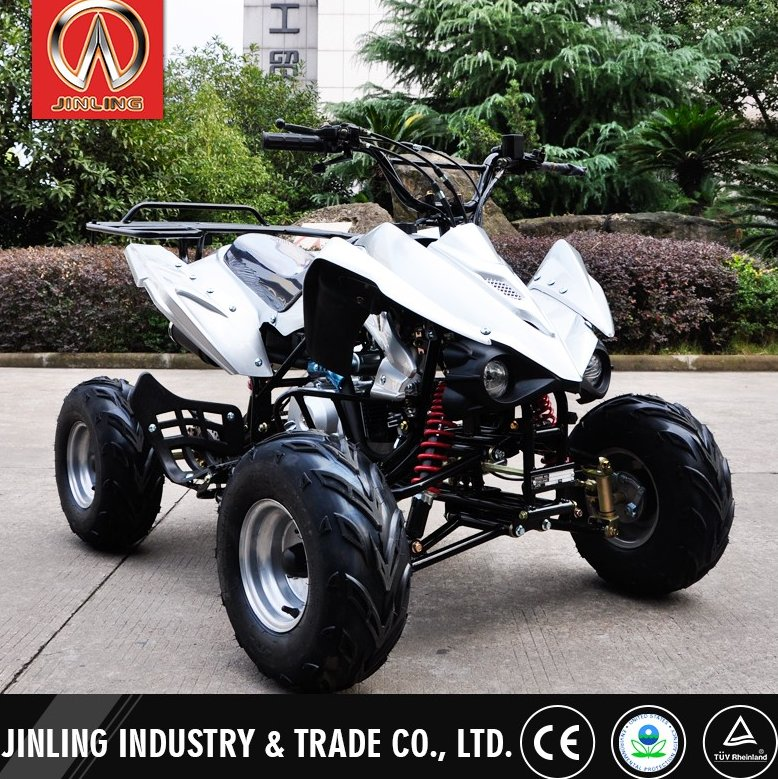 Professional gas four wheelers for kids with great price