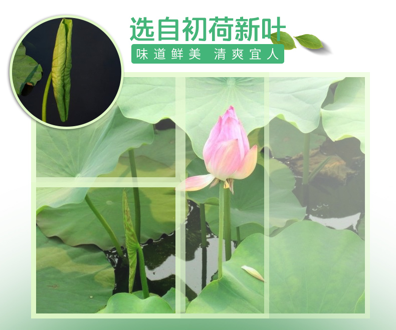 From China lotus leaf green tea natural herbal <strong>health</strong> slimming tea
