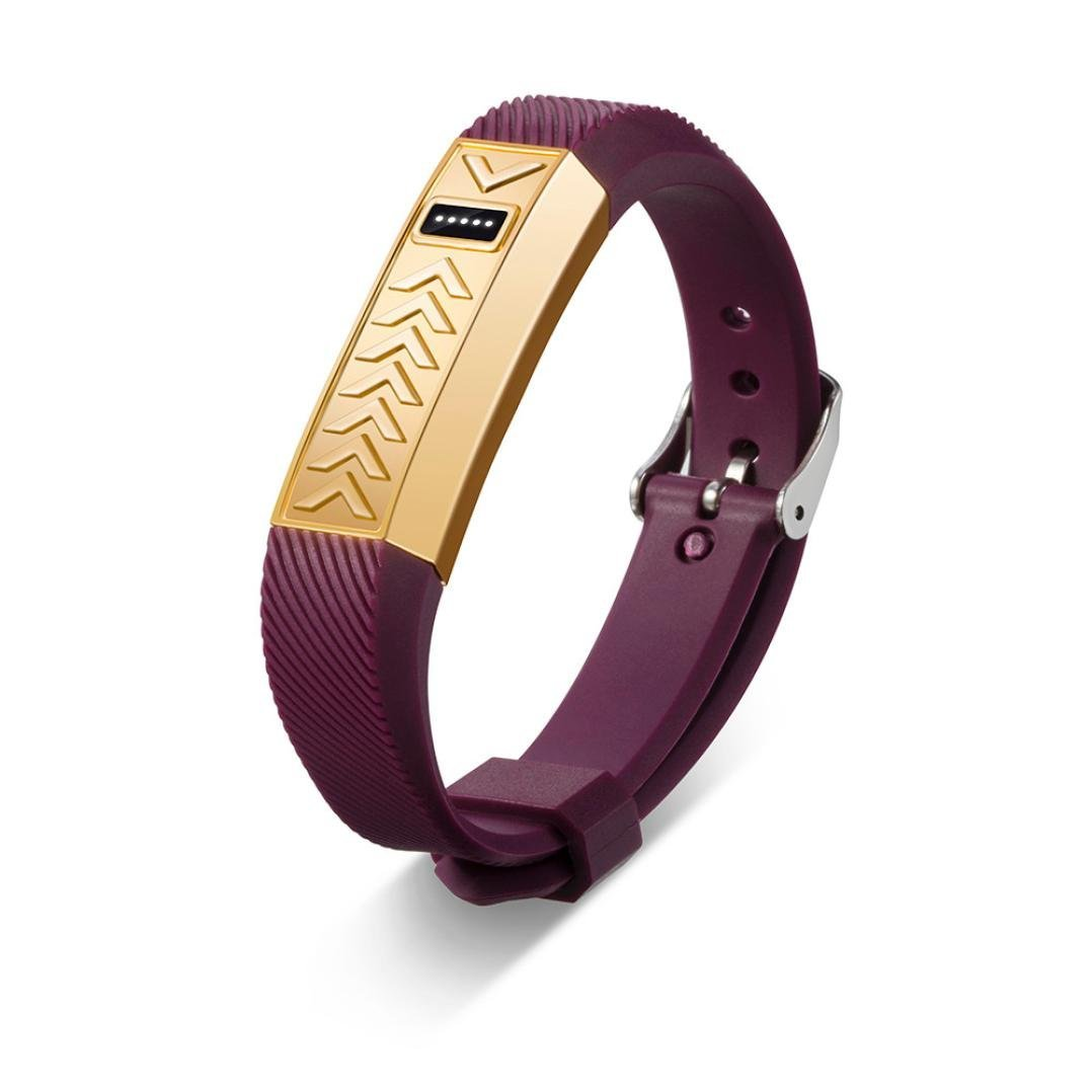 For fitbit flex wristband,Binmer(TM) Stainless Steel Protective case Cover SmartWatch + Replacement Wrist Band Strap for Fitbit Flex (Gold)