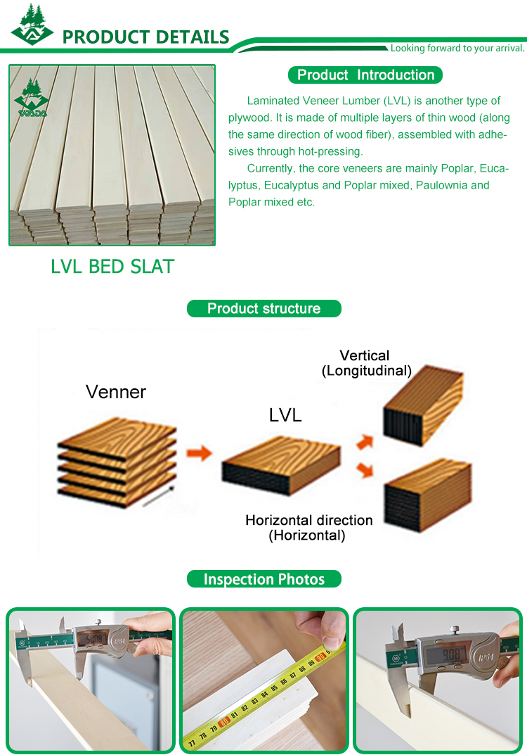 China lvl birch bent wooden bed sofa bed slat