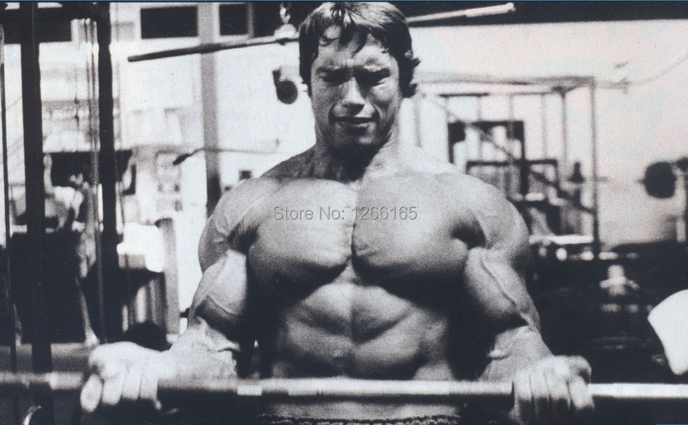 ARNOLD SCHWARZENEGGER Silk Wall Poster modern home decor Classical Fitness gym bodybuilding posters hunk muscle man 02