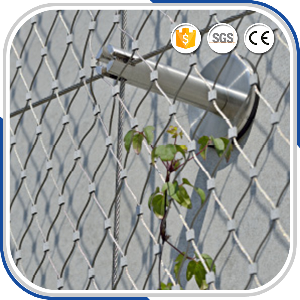 High Tech Stainless Steel Rope Mesh Support For Climbing Plants ...