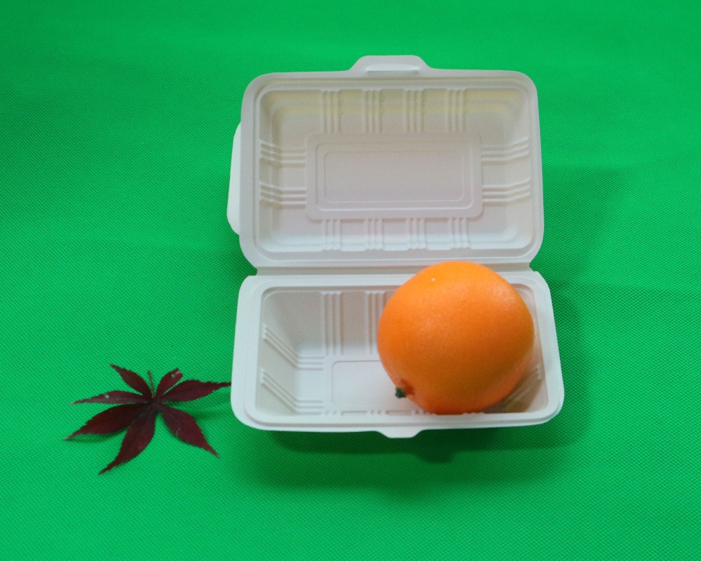 Disposable Picnic Food Container Biodegradable Cornstarch Take Out Lunch Boxes