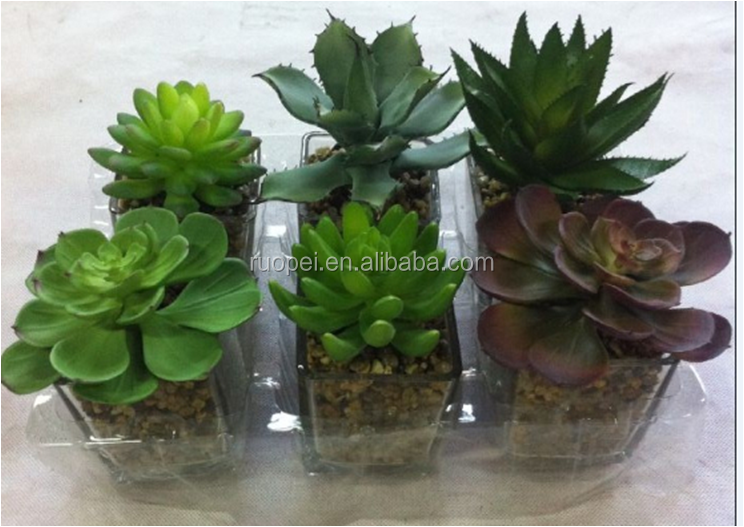 artificial plant / mini succulent plants topiary plants in pots