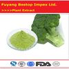 Xi Lan Hua Free samples GMP factory Dehydrated Broccoli Powder