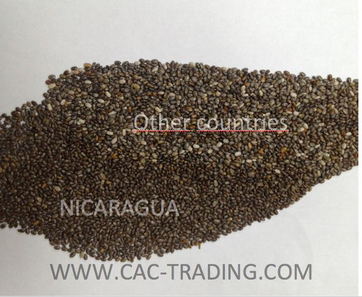 Chia seeds spanish