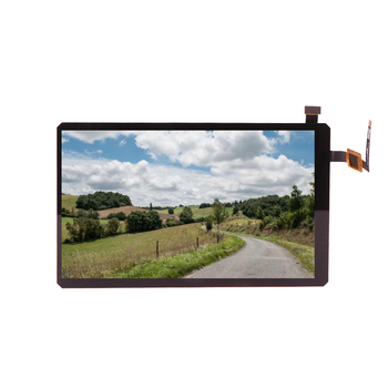 Cheapest 720*1280 7.0 Inch Ips Lcd Tft Panel For Intelligent Medical Devices