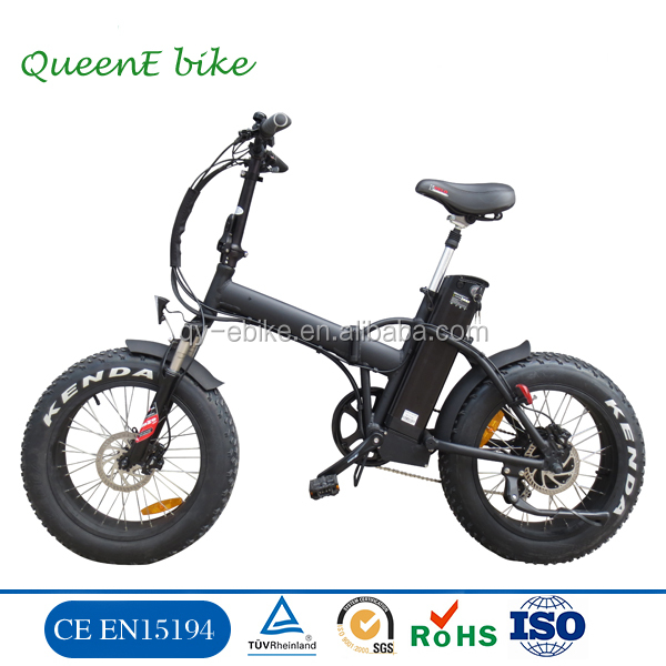500W Ebike with Long Range and Heavy-loading Capacity - China Electric Bicycle