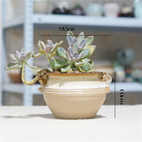 Office Ornaments Gardening Succulents Potted Plants Retro Ceramic Flower Pots