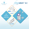 Fat Freezing Cellulite Removal 4 Pieces Crio Lipo-reduction Plate Shock Wave Mahcine