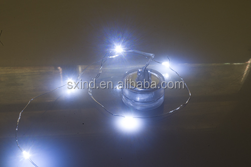 Submersible LED waterproof little lights with string lights for flower assortment