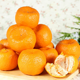 Market Price Sweet Tangerine Mandarin Orange