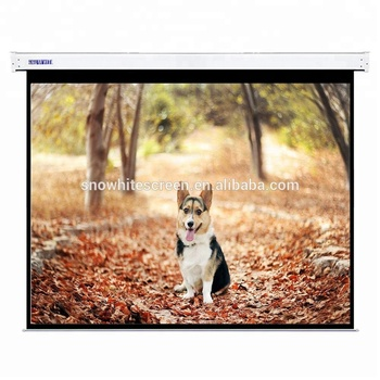 Snowhite 120 inch 16:9 Luxurious Electric Projection Screen