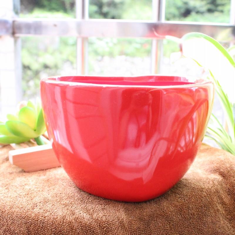 creativo de color rojo amor cermica artesanas forma carnosa macetas jardinera