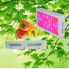Greenhouse Using High Power Panel 300w Led Grow Light Manufacturer