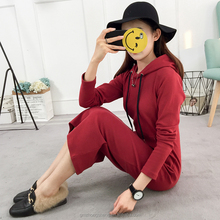 Hot Sale Plain Colour Pullover Sweater Womens Hoodie Dress Long Sleeve