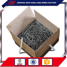 Iron Nail/ Common Wire Nail/Common Iron Nails
