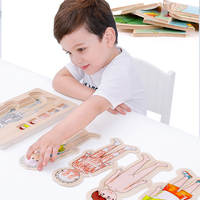 Multi-layer puzzle Human body structure kids toys wooden puzzle building blocks